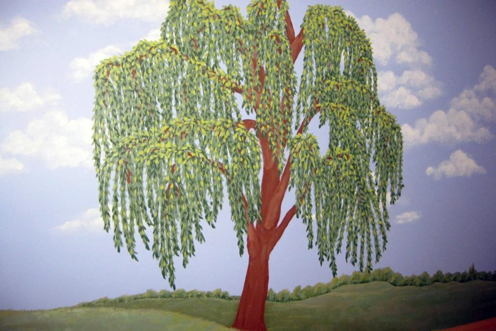 Mural with willow tree.